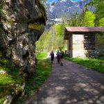 Col de Luna e Rifugio Scarpa da Frassenè
